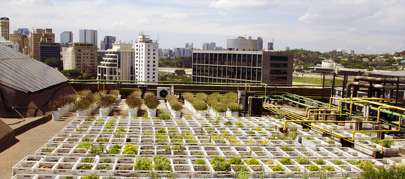 Novo grupo de estudos do IEA irá pesquisar agricultura