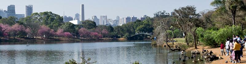 Parque do Ibirapuera - Foto: Igor Schutz/Wikimedia Commons