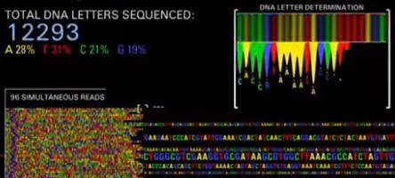 CRISPR-Cas9 - Foto: Divulgação/MIT