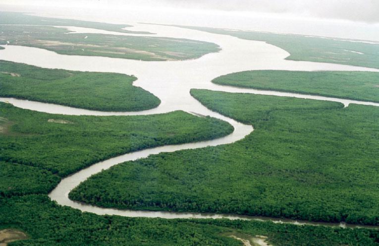 Delta do Rio Parnaíba - Foto: Wikimedia Commons