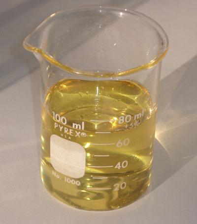 Béquer contendo biodiesel puro (B100) produzido a partir de óleo de soja - Foto: Leandro Maranghetti Lourenço / Wikimedia Commons