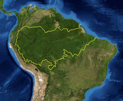 Amazônia - Foto: Wikimedia Commons