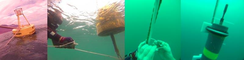 Sequência de etapas da colocação do gravador de sons submarinos para captar emissões sonoras de baleias e golfinhos - Foto: Acervo LABCMA