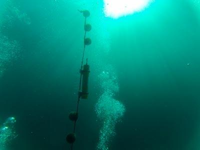 Sons se propagam no mar numa velocidade quatro vezes maior do que no ar - Foto: Acervo LABCMA