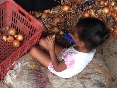 Criança trabalha em armazém de beneficiamento de cebola - Foto: Aline Brasil/Divulgação via MPT