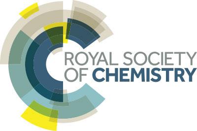 20160816_rsc-logo
