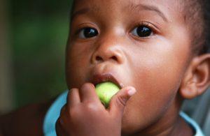 Crianças brasileiras comem mais fruta no lanche, mas açúcar ainda está em excesso