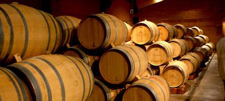 SANTIAGO, CHILE - fevereiro de 2010 - Barris de carvalho na visita a vinícula Casas del Bosque.