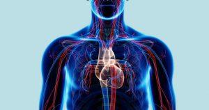 """""""Órgão-em-chip"""" é opção para substituir experimentação animal em estudos científicos"""