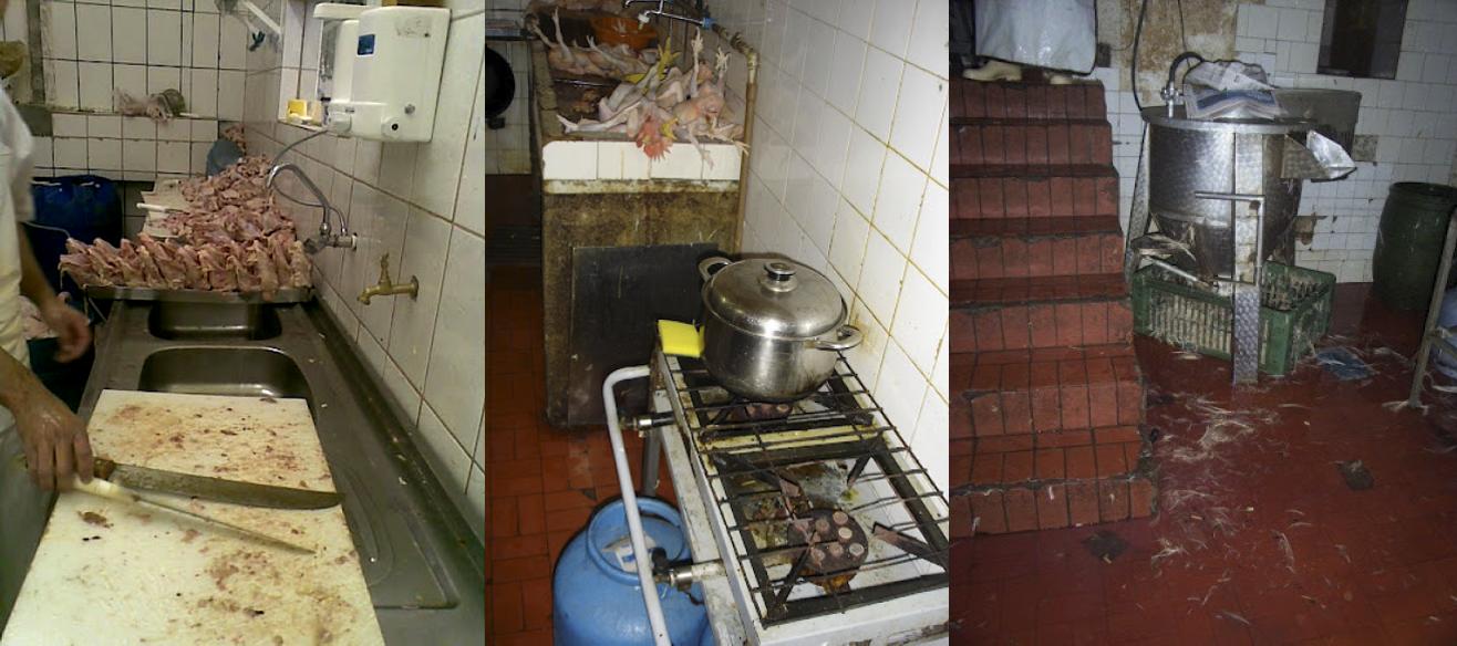 Higiene precária no interior dos estabelecimentos comerciais - Fotos: Andréa Boa Nova
