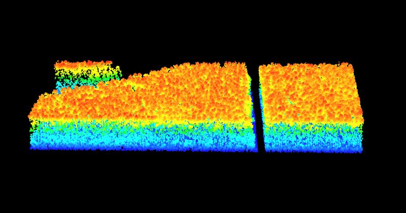 As nuvens permitem acompanhar alterações de qualificação e quantificação da biomassa do local - Imagem: Laboratório de Realidade Virtual
