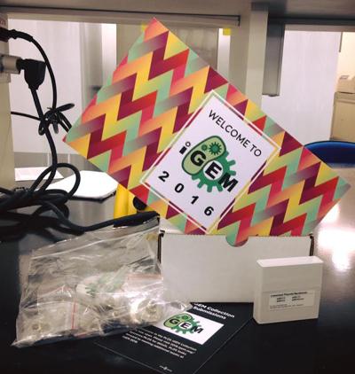 Kit do iGEM recebido pela equipe com amostras de DNA e material para testar células – Foto: Divulgação/CBSin EEL