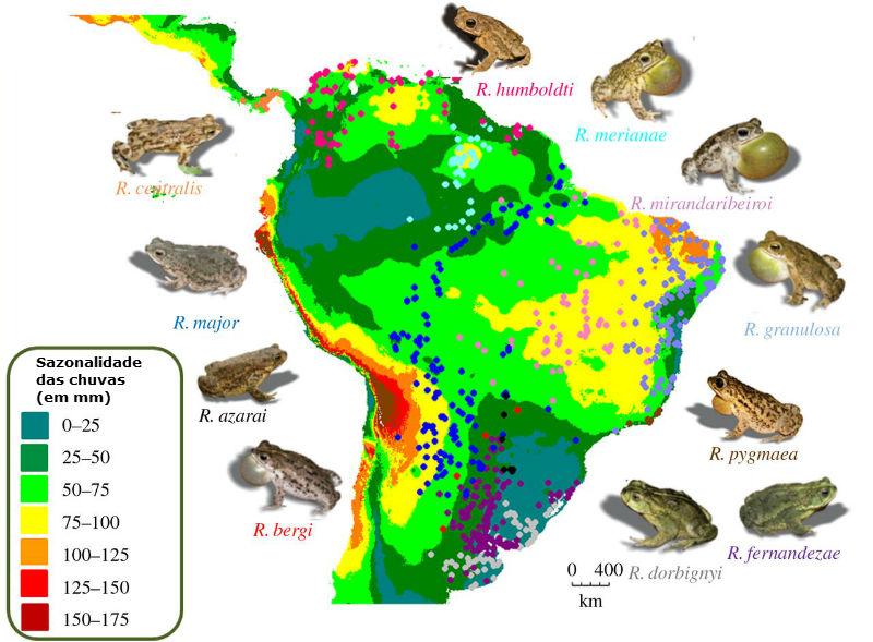 Mapa: Adaptado do artigo