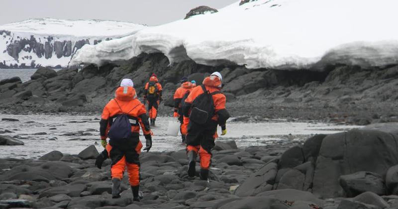 Coleta na Antártica Marítima, grupo de Biodiversidade de Macroalgas. Operação Antártica XXXIV, 2015 - Foto: Hosana Maria Debonsi