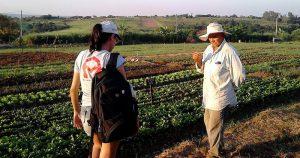 Núcleo busca soluções sustentáveis para pequenos agricultores