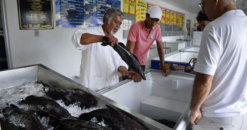 Mercado de peixes - José Cruz/Agência Brasil