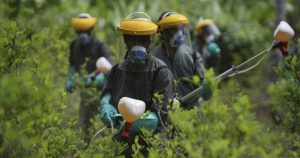 Mudanças em lei de agrotóxicos colocam em risco segurança alimentar