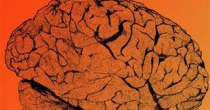 Os desafios da neurologia no Abrace uma Carreira