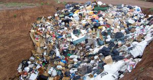 Lixo industrial gera renda quando manejo é feito em rede