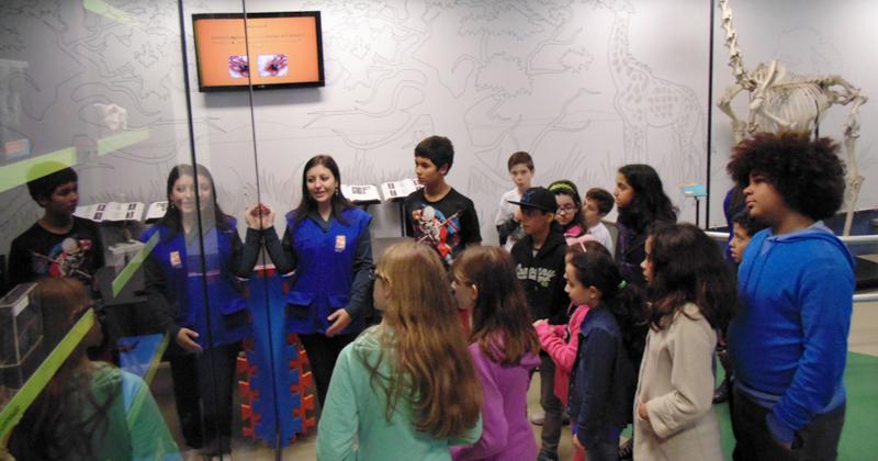 Visita guiada em atividade realizada pelo MAV anteriormente Foto: Divulgação/MAV