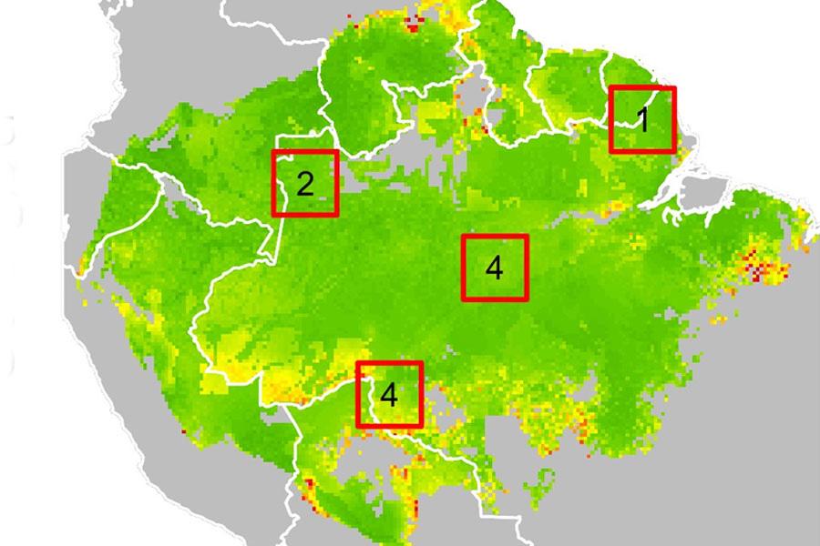 Quatro áreas foram arbitrariamente escolhidas para ilustrar quatro diferentes comportamentos geográficos - Fotos: divulgação