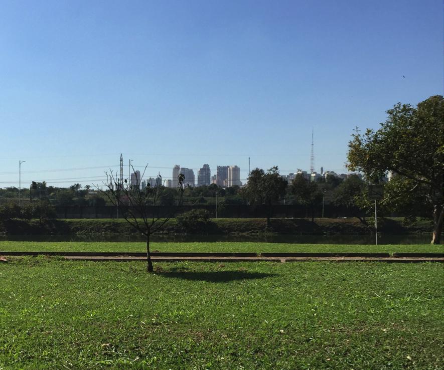 Gramado às margens da raia olímpica, área de uso controlado, cercada por alambrado