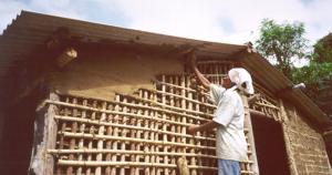 Pesquisas resgatam história genética de remanescentes de quilombos