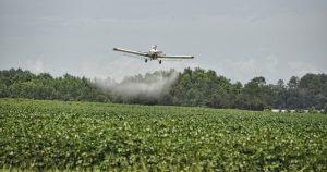 Direito à informação sobre agrotóxicos em alimentos é essencial