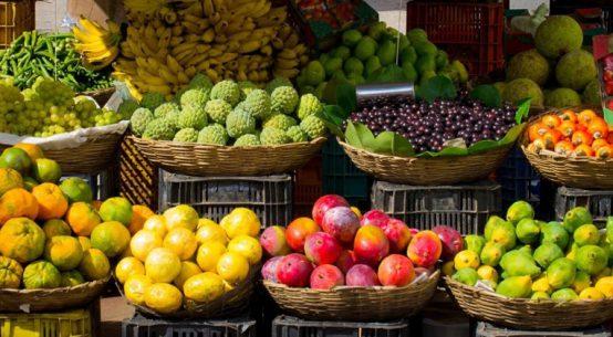 Com compostos bioativos, frutas auxiliam na manutenção da saúde