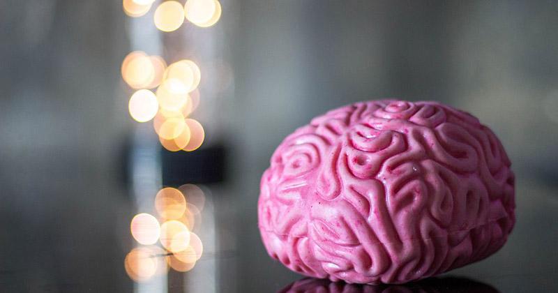 Atividades podem estimular sinapses e desenvolver potencial infantil