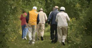 Nutrição energética de idosos requer controle rigoroso