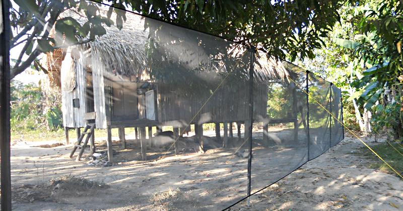 Expansão da área de transmissão da malária dificulta o controle da doença; na foto, rede para coleta de mosquitos ao redor de casa em Lábrea – Foto: cedida pela pesquisadora