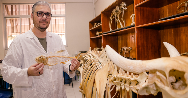 O professor da Ufac André Luis da Silva Caldas coordena o Laboratório Didático de Anatomia e Fisiologia Comparada e usa peças de cadáveres de animais nas aulas dos cursos de Biologia e Enfermagem - Foto: Cecília Bastos/USP Imagens