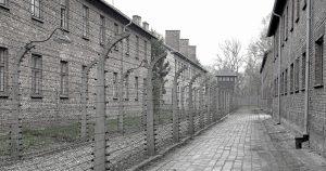 Único sobrevivente brasileiro de Auschwitz participa de evento na USP