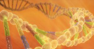 """Nova base de dados para atlas genômico do câncer é destaque na """"Science"""""""