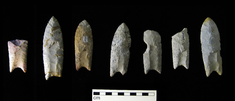 A população relacionada à cultura Clóvis veio desceu rumo ao Sul, mas deixou os característicos projetéis ovalados para trás. Os arqueólogos encontraram essas flechas no Novo México, sul dos Estados Unidos