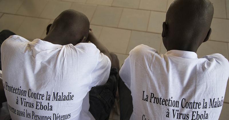 Novos casos de ebola voltam a surgir na África