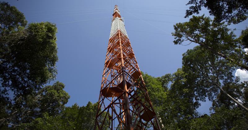 Torre Atto ajuda nos estudos sobre mudanças climáticas na Amazônia