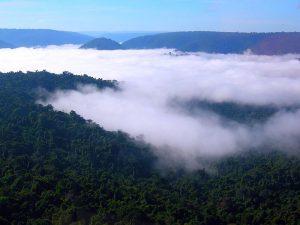 Águas originadas na Amazônia são fonte de chuva para todo o Brasil