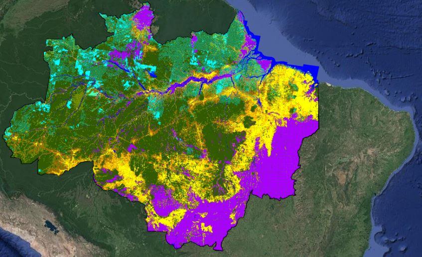 Desmatamento na região da Amazônia