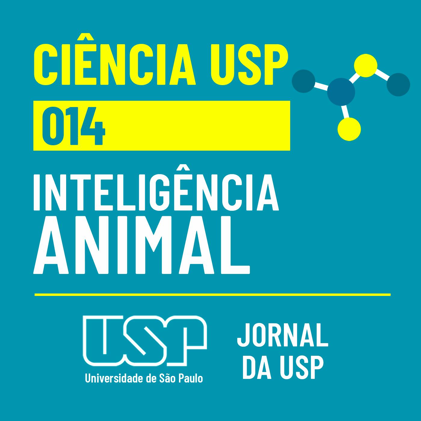 Ciência USP #14: Será que a inteligência é exclusiva dos seres humanos?