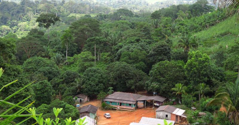 Moradia de agricultores familiares rodeada por sistema agroflorestal com cacau conectando-se com a floresta conservada na Reserva Legal