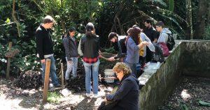 Crianças da comunidade São Remo desvendam a biologia com alunos da USP