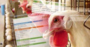 Planilha para controlar fluxo de caixa ajuda a salvar produtor rural da falência