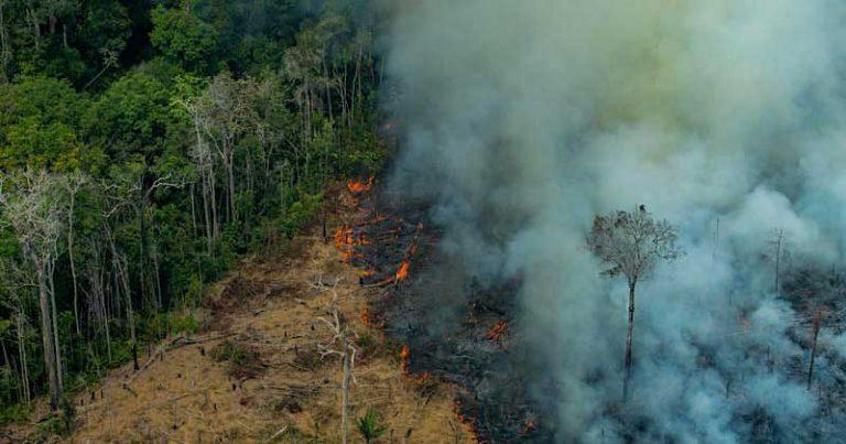 Desmatamento_Victor-Moriyama-Greenpeace