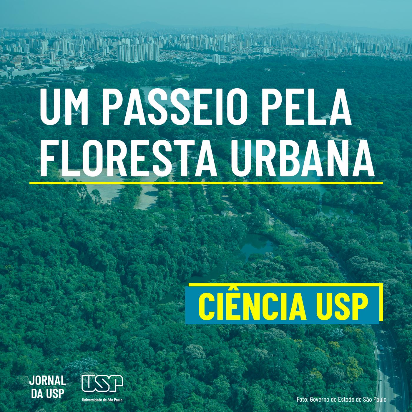 Capa de Ciência USP #34: Um passeio pela floresta urbana