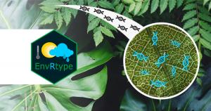 Software gratuito facilita trabalho de melhoramento genético de plantas