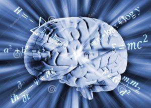 """Uso da matemática no estudo do cérebro no """"USP Analisa"""""""