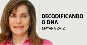 Variações genéticas não justificam subdividir raça humana em categorias