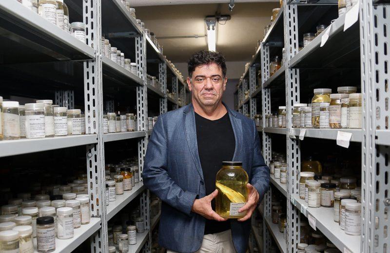 O diretor do Museu de Zoologia, Mário César Cardoso de Pinna, na coleção ictiológica (peixes) - Foto: Cecília Bastos / USP Imagens